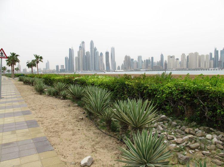 Blick von der Palme auf Strand + Häuser von Dubai Marina