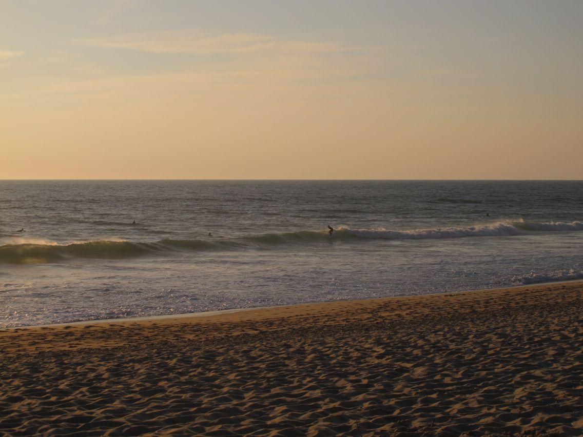 SurferA1