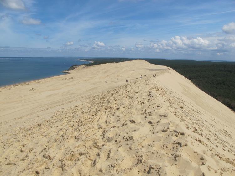 B_Dune01