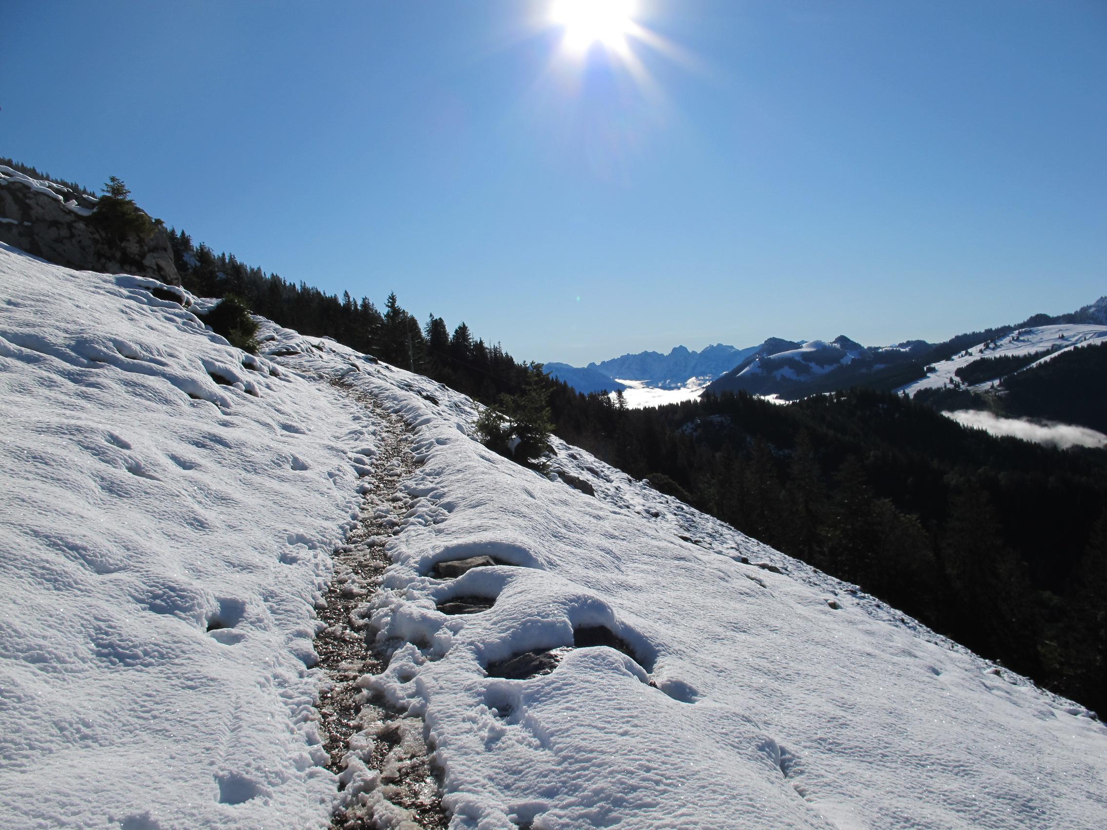 Hikingthealps