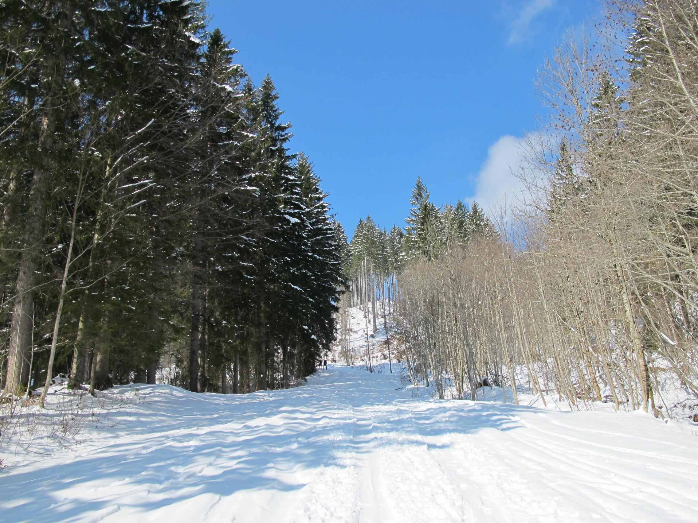 #skitour Ski Tour